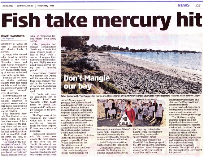 Fish take mercury hit